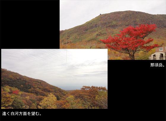 blog11.10.17nasu.jpg