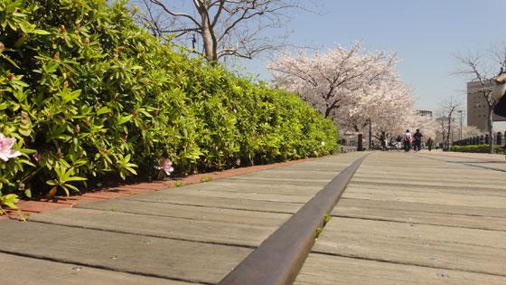 blog11.4.14yokohama3.jpg
