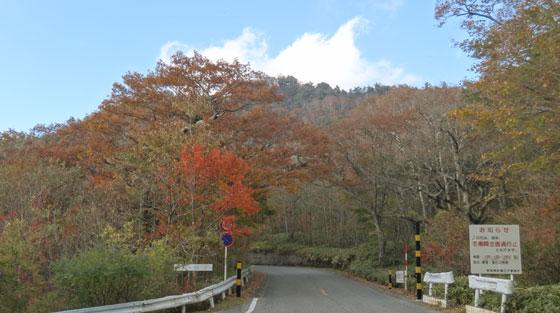 blog12.10.22tacakagi.jpg