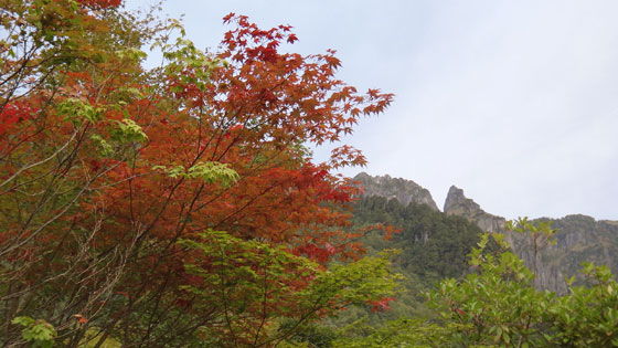 blog12.10.5tanicolored.jpg