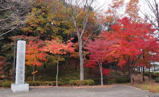 blog12.12.2centalpark1.jpg