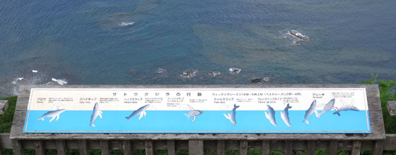 blog12.8.21mikazukiyama3.jpg