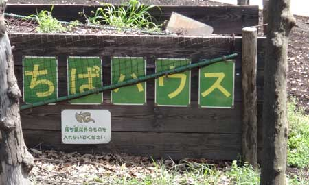 blog13.4.4kawawafujipark4.jpg
