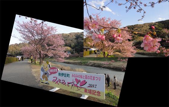 blog2012.2.27sakura1.jpg
