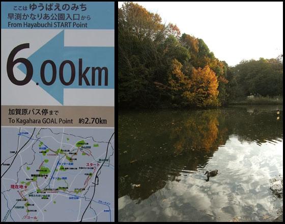 blogkohyowanpo2.jpg