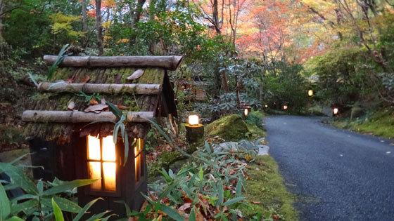 blog14.11.11sanga.jpg