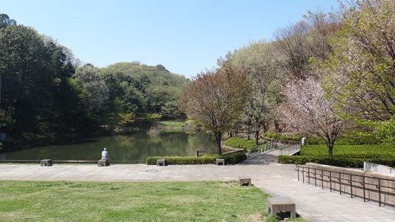 blog14.4.11tsuzuki.jpg