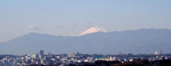 blog15.1.11fuji.jpg