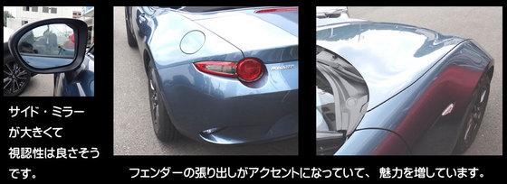 blog15.6.10roadster1.jpg