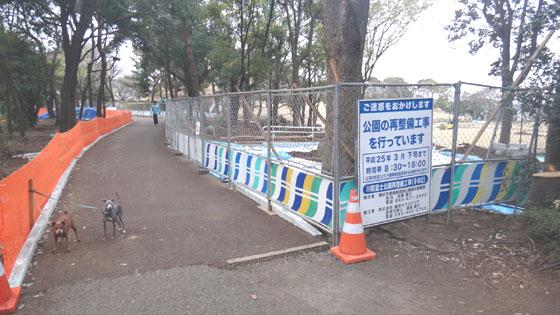 blog13.3.24fujipark1.jpg