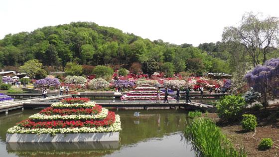 blog13.4.25flowerpark5.jpg