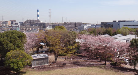 blog13.4.4kawawafujipark3.jpg
