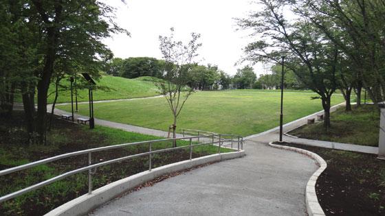 blog13.6.17fujipark.jpg