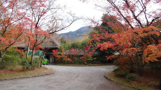 blog14.11.14yufuin2.jpg