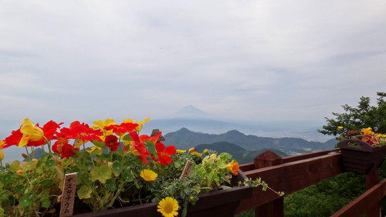 blog15.6.3katsuragi1.jpg